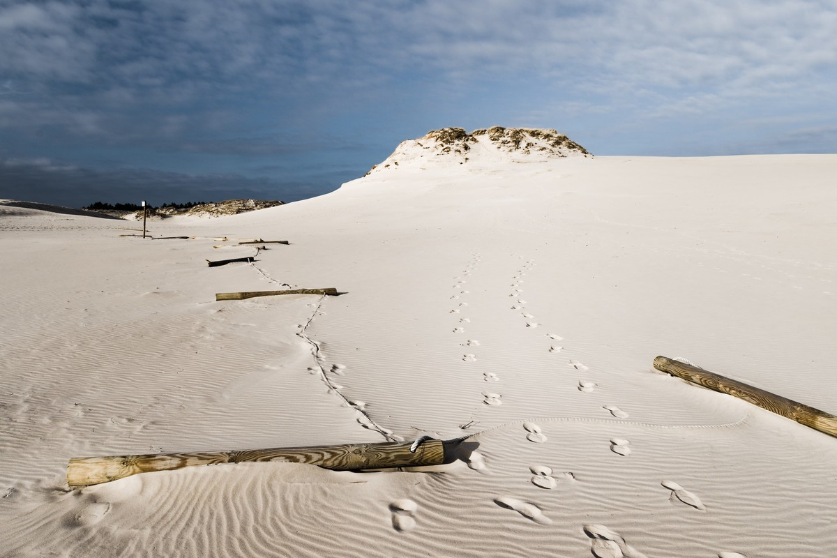Moving dunes in the Slowinski National Park